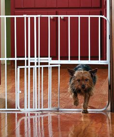 Take a look at this White Expandable Door Pet Gate by Etna Products on #zulily today!