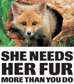 The Creator gave me skin and fur for warmth and protection. Humans have their own skin and the ability to make clothing. I do not steal yours so please allow me to keep mine. You have power over me, so please, I beg of you, choose kindness over cruelty.