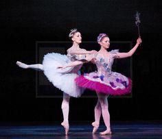 Aurora - Marianela Nunez, Lilac Fairy - Claire Calvert, Vision Scene from the Royal Ballet's Sleeping Beauty. Photo by Elliott Franks
