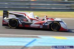 Zytek Z11SN - Jota Sport Harry Tincknell (GB)/Simon Dolan (GB)/Oliver Turvey (GB) 24h Le Mans, Racing, Album, Sport, Vehicles, Running, Deporte, Auto Racing, Sports
