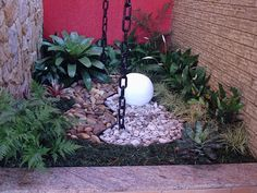 Jardim de Inverno: Aprenda como fazer em casa (30 Fotos) Dry Garden, Garden Pond, Indoor Garden, Window Well, Cacti And Succulents, Small Gardens, Plant Decor, Water Features, Garden Design
