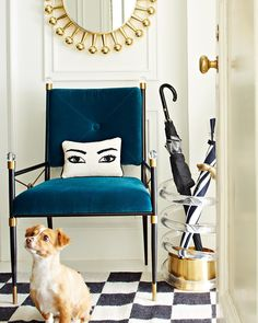 An elegant entryway makes coming home an event. Jonathan Adler philosophy: build a timelessly chic foundation, then accessorize with abandon. Luxury Dining Tables, Luxury Chairs, Modern Dining Chairs, Living Room Turquoise, Dog Seat, Jonathan Adler, Egg Chair, Swivel Chair, Dogs Of The World