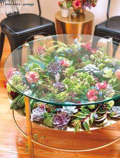 Decorating with succulents. House plants as decor accessories. Decorating with succulents. House plants as decor accessories. Küchen Design, Home Design, Design Ideas, Interior Design, Home Crafts, Easy Crafts, Diy Home, Terrarium Table, Succulent Terrarium