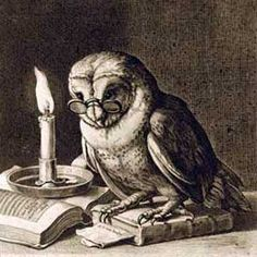 the wise old owl - Google Search