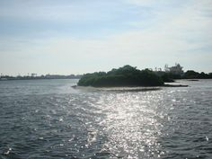 A tiny Island on Vembanad lake in Kochi