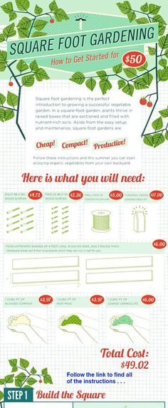 Green Infographics: 14 Facts About the Environment Square foot gardening Veg Garden, Fruit Garden, Garden Posts, Vegetable Gardening, Organic Gardening, Gardening Tips, Square Foot Gardening, Raised Garden Beds, Raised Beds