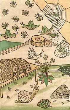 Konrad von Megenberg, illustration from 'Das Buch der Natur' [author : Johann Bämler], published Augsburg, Germany, 1481.