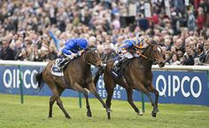 Legatissimo (right), bred by Newsells Park Stud, denies Lucida in last year's 1000 Guinneas. She has been retired due to a setback says David Wachman. 29.04.2016