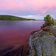 Glaskogen Nature Reserve - , Varmland, Sweden