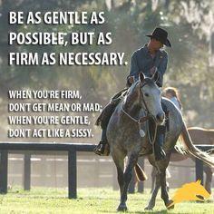 Parelli -- great quote!