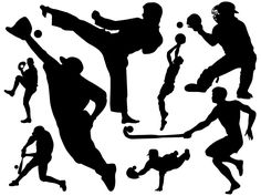 Assorted Sports Wall Decal Collection