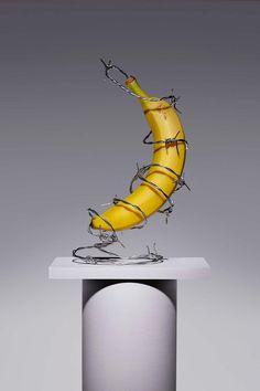 ANIARA.ART - Kyle Bean