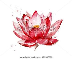 Pink lotus watercolor illustration  isolated on white background. Hand painted lotus flower. Flower with watercolor splashes, stains. Botany illustration. - stock photo
