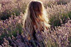 ..lovely lavender colours..