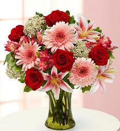 Babies breath-Filler Stargazer Lily-Form Rose-Mass Gerber Daisy-Mass