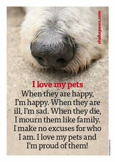 I love my pets. When they are happy, I'm happy. When they are ill, I'm sad. When they die,  I mourn them like family. I make no excuse for who I am I love my pets and I'm proud of them!