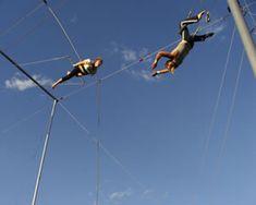 Take a trapeze lesson. $55.