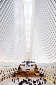 The Oculus Academic Goals, Career Goals, Flights To Rome, Florence Cathedral, Performance Goals, St Peters Basilica, I Have A Secret, Us Capitol