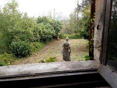 da una finestra del Castello di Castelnovo, leggiadre presenze... #castelli #piacenza #emiliaromagna #valtidone #turismo