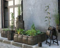 Bacsquare : Urban Garden