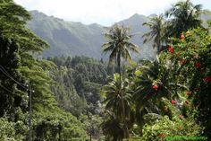 Raiatea Tahiti   Raiatea Tour de l'île - Randonnée en véhicule - Raiatea Tahiti - En ...