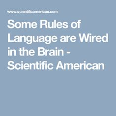 Some Rules of Language are Wired in the Brain - Scientific American