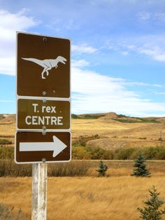 Dinos in #Saskatchewan? Visit these sites and learn about the prehistoric creatures that roamed our lands millions of years ago.