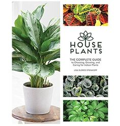 Het boek van de Houseplant guru https://www.amazon.com/Houseplants-Complete-Choosing-Growing-Caring/dp/1591866901/ref=sr_1_1?s=books&ie=UTF8&qid=1499131204&sr=1-1&keywords=lisa+eldred+steinkopf