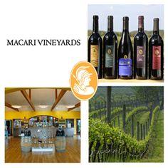 Macari Vineyards & Winery | Long Island Wine Country