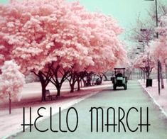 This my favorite month! Spring is on its way! Things are heating up at PRP. Keep your eyes on us! Hello March Images, Happy March, February, Candy Trees, Altered Cigar Boxes, Pink Trees, Printable Calendar Template, Gifts For Boss, Friend Birthday Gifts