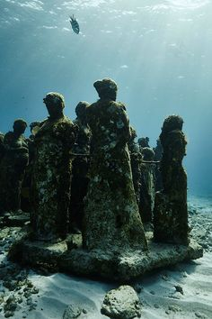 Claudia Legge: MUSA by Jason deCaires Taylor