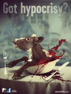 The Bloody Dairy Industry