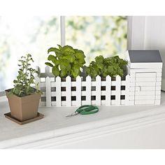 Indoor Allotment by Lakeland Garden Crafts, Garden Tools, Herb Planters, Allotment, Window Sill, Kitchenware, Sweet Home, Herbs, Indoor
