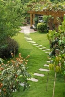 starting a garden - beautiful garden with stepping stones and a pergola
