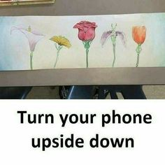 I love life quotes: turn your phone upside down Cool Illusions, Optical Illusions, Wow Facts, Weird Facts, Real Facts, Creative Pictures, Creative Art, Inspiring Pictures, Funny Drawings