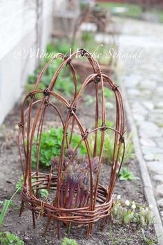 Peony support made with grape vines Garden Crafts, Garden Projects, Garden Art, Peony Support, Plant Supports, Garden Trellis, My Secret Garden, Garden Structures, Plantation
