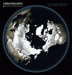 time lapse earth - vegetation cycle... looks like breathing..
