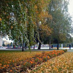 Наш #красивый #город #Измаил  #seiyk #elenaseiryk #nature #season #mothernature #autumn #природа #украина #izmail #ukraine #одесса #odessa #odessaregion #небо #облака #sky #skylovers #colorful #beauty #осень #деревья #листья #trees #leaves #цветы #березы #flowers