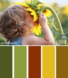 First off, I love this picture. What child hasn't wanted to bury their face in a sunflower just to see what it smells like? Second, there is something iconic about the look and feel of a sunflower and the late summer, early fall feel that it conveys. These colors are perfect for gardening, summer into autumn look you're going for.