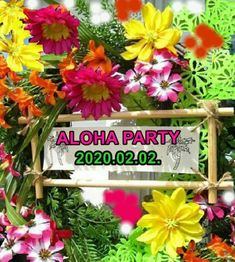 Ha végeztél Ho'oponopono tanfolyamot nálunk, ott a helyed. Ismétlünk, tanulunk, tisztítunk, a belső gyermekkel meditálunk. Írhatsz a hawaii@hooponoponoway.hu címre vagy nézd meg itt: www.HooponponoWay.hu Aloha Party, Hawaii, Plants, Plant, Hawaiian Islands, Planets