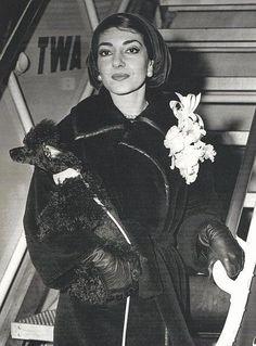 Maria Callas e Toy all'aeroporto di New York, è il 1957 #VerdiMuseum