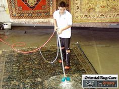 Homemade Carpet Cleaners are Easy to Use in Miami