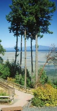 Rathtrevor Beach, BC Parks, Parksville  #swimsuitsforall, #BeachBelle and #pinyourparadise