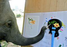 Asian Elephant Artt