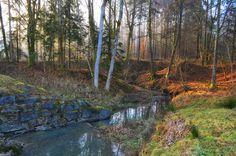 Limbacher Fluss | Flickr - Photo Sharing! Photography Photos, Explore, Mountains, Nature, Plants, Travel, River, Naturaleza, Viajes