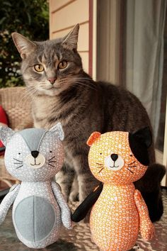 Unnamed new sewing pattern...and a real cat that I did not sew.