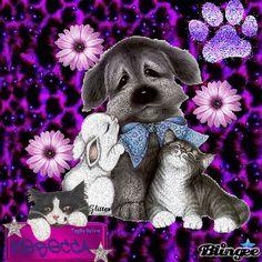 Best Friend Blingee Gifs - Bing images