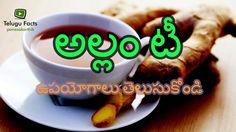 Ginger Tea Uses in Telugu | అల్లం టీ ఉపయోగాలు | Telugu Facts Tredny