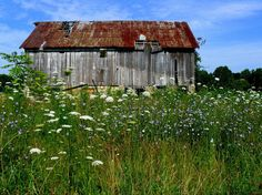 Reminds of the barn next to my house I grew up in