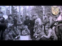 Viipurinlahti kesällä 1944